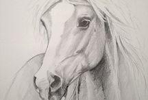 Hevoset hiilityö