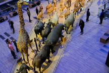 k.kids exhibition