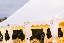Farm wedding / by Elizabeth Sadlak