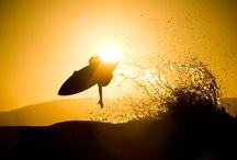 Surfin' safari ☼ / Surf photos