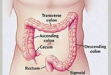 Colon Cancer Treatment / Expert-reviewed information summary about the treatment of colon cancer, Comprehensive overview covers signs, symptoms and treatment of colon and rectal cancers.