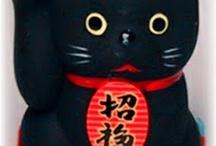 Black cats / Cats