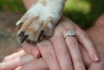 Amor perruno / Una selección de ideas para que tu mascota también participe de tus ocasiones especiales. Recordá que en Eventalia podés encontrar Emprendedores, Artesanos, Empresas y Profesionales que pueden ayudarte.