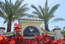Sorrento Gainesville / Sorrento Gainesville is a neighborhood in NW Gainesville, FL. The neighborhood features resort style amenities and is only 5 minutes to UF! It's near Norton Elementary, Westwood Middle School, and Gainesville High School.