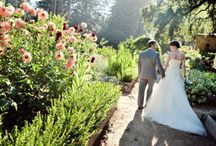 Garden Weddings / by Yehudit Steinberg M.Ed.