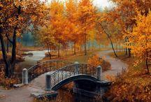 Mosty i mostki