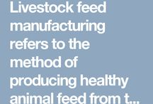 Explore The Workflow Of Poultry And Cattle Feed Plant