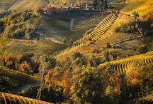 My Beautiful Hills - Langhe Monferrato Roero