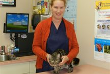 Staff / Essa Veterinary Services - Staff