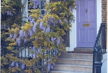 Curb Appeal / by Janet Mills