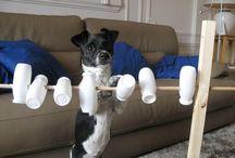 Dog game, diy