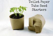 toiletpaper rolls