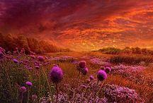 belleza naturaleza