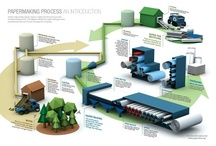 Paper & Manufacturing Industry