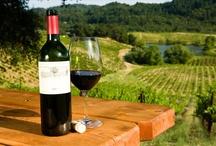 El apasionante Mundo del Vino ! / El apasionante Mundo del Vino !