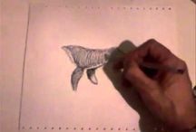 video & sketches