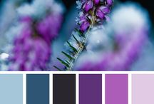 11/11/17 Colour palettes