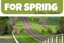 Spring Time Fun