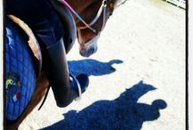 Ippoterapia / Therapeutic Riding