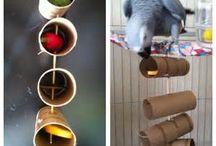 hračky pre papagája