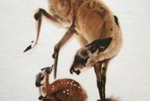 Mirko Hanak Bambi illustrations