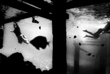 Dhklsjk; / by Mollie Ribar