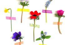 Flowers / Bloemen 4 / by Geschikt Groen Geschikt