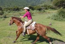 TripAdvisor Reviews | Rancho Las Cascadas
