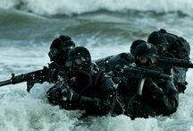 navy / ?