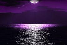 Good night see!