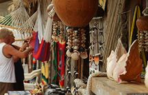 Cancun City and Shopping Tour