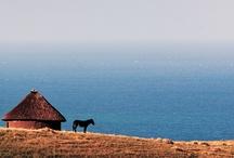 Astounding Africa / by Paulina Lopez