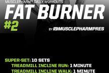 Fat Burner Programs