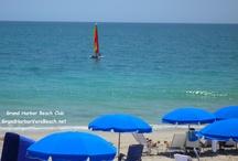 VERO BEACH FLORIDA / I LOVE LIVING IN VERO BEACH!   Barbara Martino-Sliva Realtor with Dale Sorensen Real Estate.