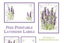 GRAPHIC - {labels}