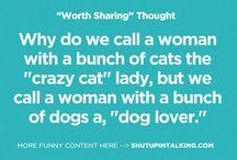 """crazy"" Cat Lady"