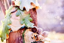 Fairy Garden  / Everything fairy! Enchanted furniture, magical fairy houses and gardens and even fairies themselves.