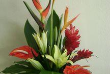 Flower Arrangements Tropical
