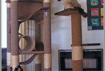 Macska házikók