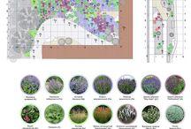 Diseño con Vegetación