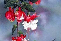 çiçek ve kuş