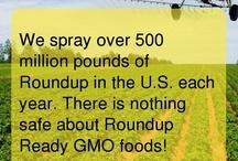 GMOs - NO!!!!