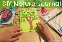Nature Studies for Homeschool / Charlotte Mason homeschool, nature studies,