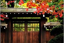 foto japan