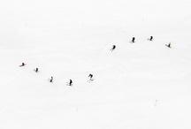 Mountain photography / Photographies de montagne