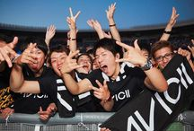 Avicii Fans