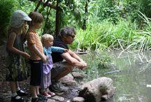 Environmentally Conscious Parenting