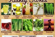 Kidney Disease / by Carly Fabok