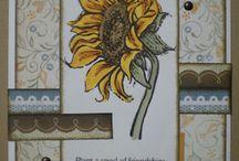 CTMH Friendship Bouquet 5-2012 SOTM / by Christa Hamilton