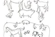 domácí zvířata omalovánky